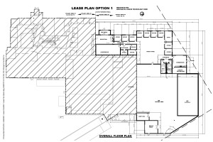 WG-1 Lease Plan Option-1